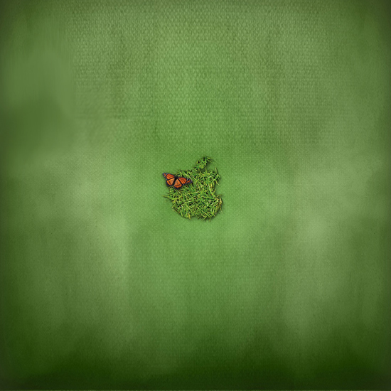 Apple Green iPad Wallpaper