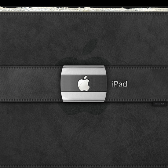Apple Leather Buckle Portfolio