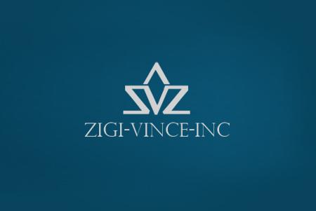 Zigi Vince Inc
