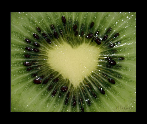 kiwi_love